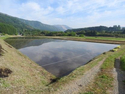 PREMIUM WATER熊本復興イベント稲刈り体験2018